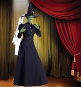 WICKED WITCH COSUME