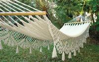 Afternoon Haven Hammock