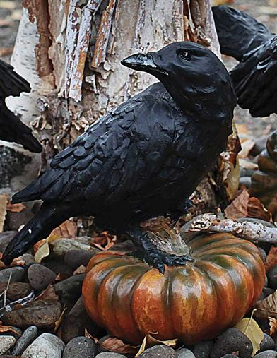 RAVEN ON GOURD (PICKED AT RANDOM)