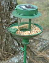 VINTAGE GREEN BIRD FEEDER STAKE