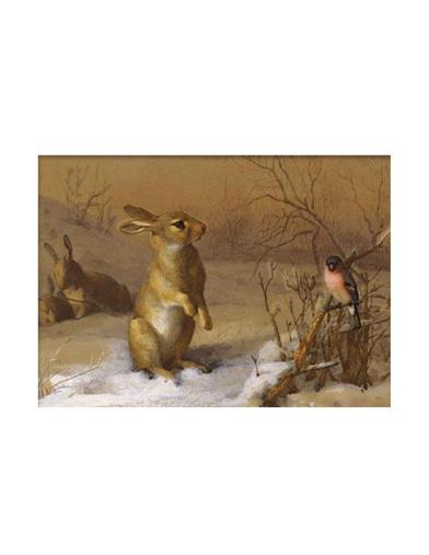 Rabbit And Bullfinch Unframed