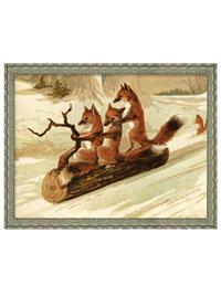 Sledding Foxes