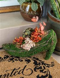 Emerald Slipper Planter