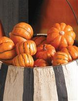 PUMPKIN FILLER (SET OF 24)