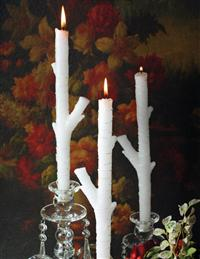 BLANCHED BIRCH TAPERS (SET OF 4)