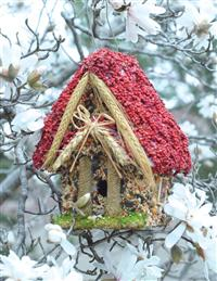 Hansel & Gretel Edible Bird Cottage