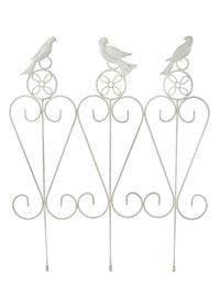 French White Songbird Garden Rail