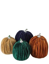 Velvet Pumpkin Patch (Set Of 4)