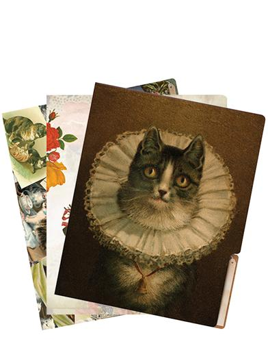 Trusted Companions File Folders (Cat - Set Of 6)