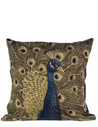 Dignified Peacock Cushion