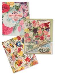 Seed Packet Manila Folders (Set Of 6)
