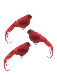Red Bird Ornaments (Set Of 3)