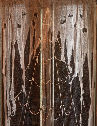 Black Widow's Web Lace Curtain