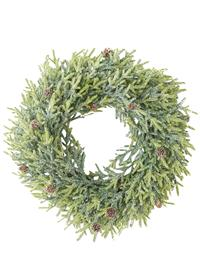 A Juniper In Winter Wreath