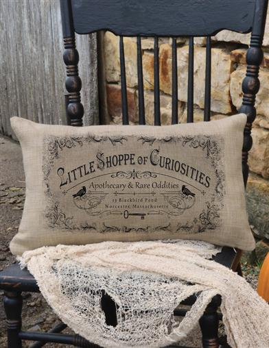 Little Shoppe Of Curiosities Throw Pillow