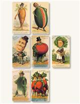 VEGETABLE SOCIETY STICKERS