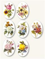 REDOUTE FLOWERS STICKERS