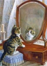 Kitten W/ Mirror (Pkg Of 6 Friendship Cards)