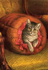 Cozy Cat (Pkg Of 10 Holiday Cards)