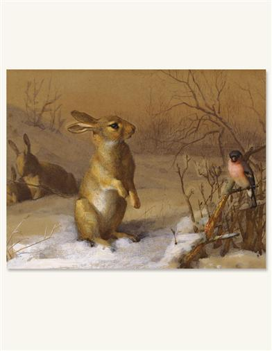 Rabbit And Bull Finch (Pkg Of 10 Holiday Cards)