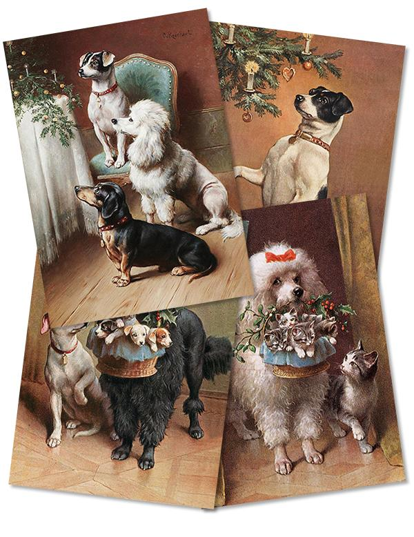 REICHERT DOGS PKG OF 12 HOLIDAY CARDS