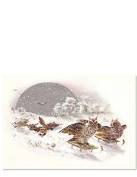 Sledding Owls Holiday Cards (Pkg Of 10)