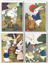 PETER RABBIT (PKG OF 8 NOTECARDS)